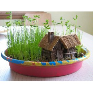 Indoor garden kits for kids